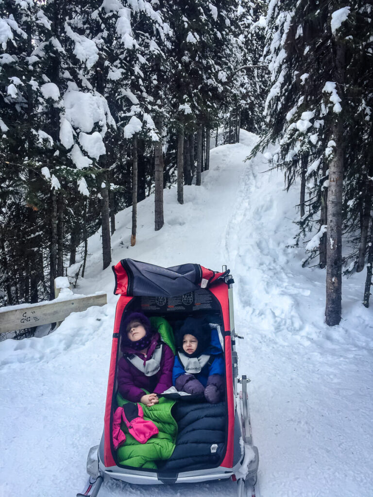 snowshoe with baby in chariot with ski attachment
