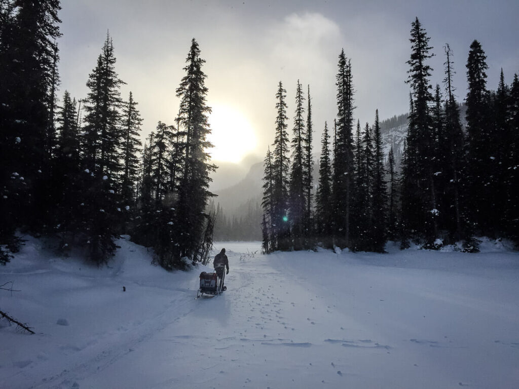 snowshoeing with a baby in thule chariot