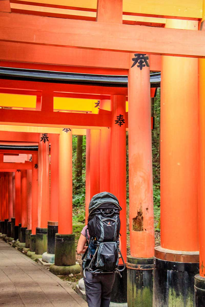 using best backpack carrier for toddlers for hiking in Kyoto with a baby and toddler