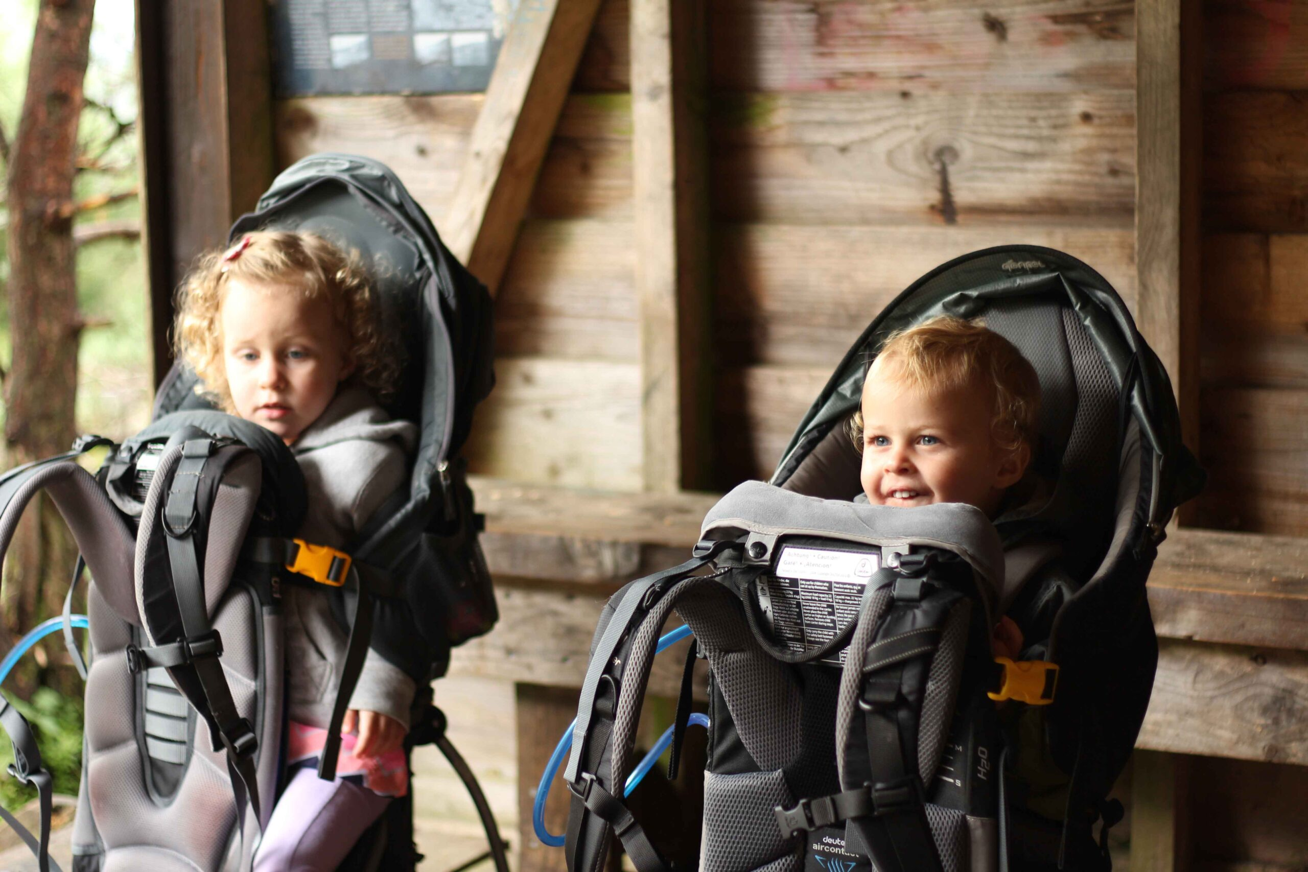 best toddler backpack carrier