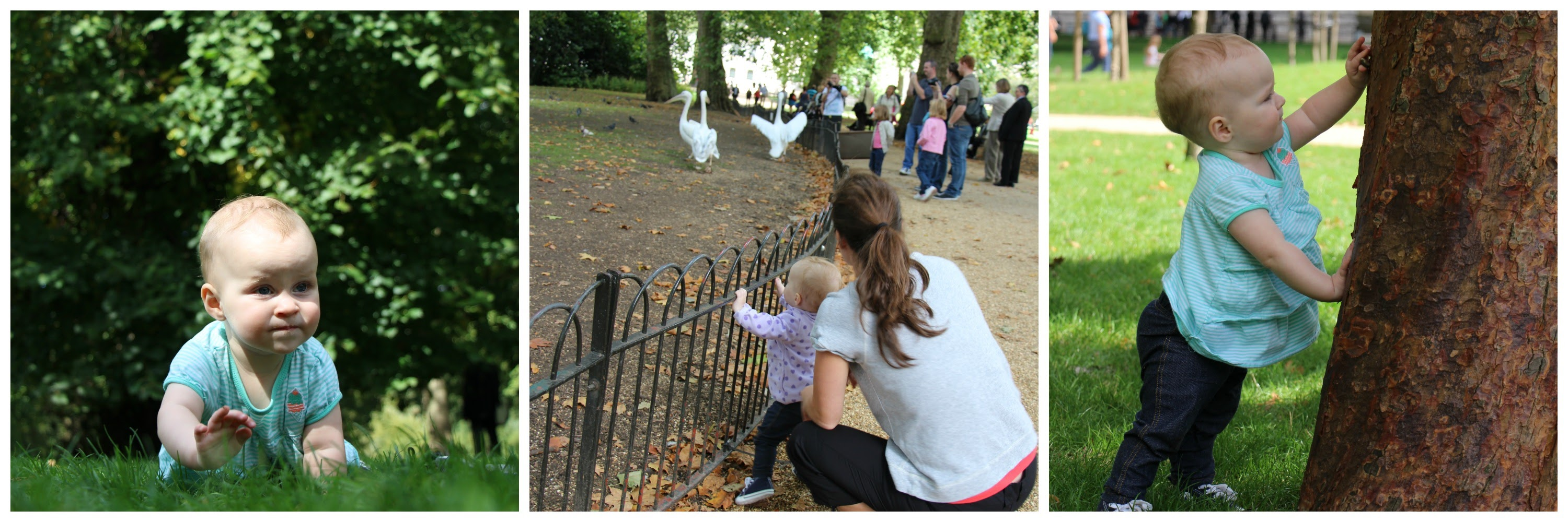 Baby Can Travel - London Playgrounds and Parks for Babies or Toddlers - St James's Park