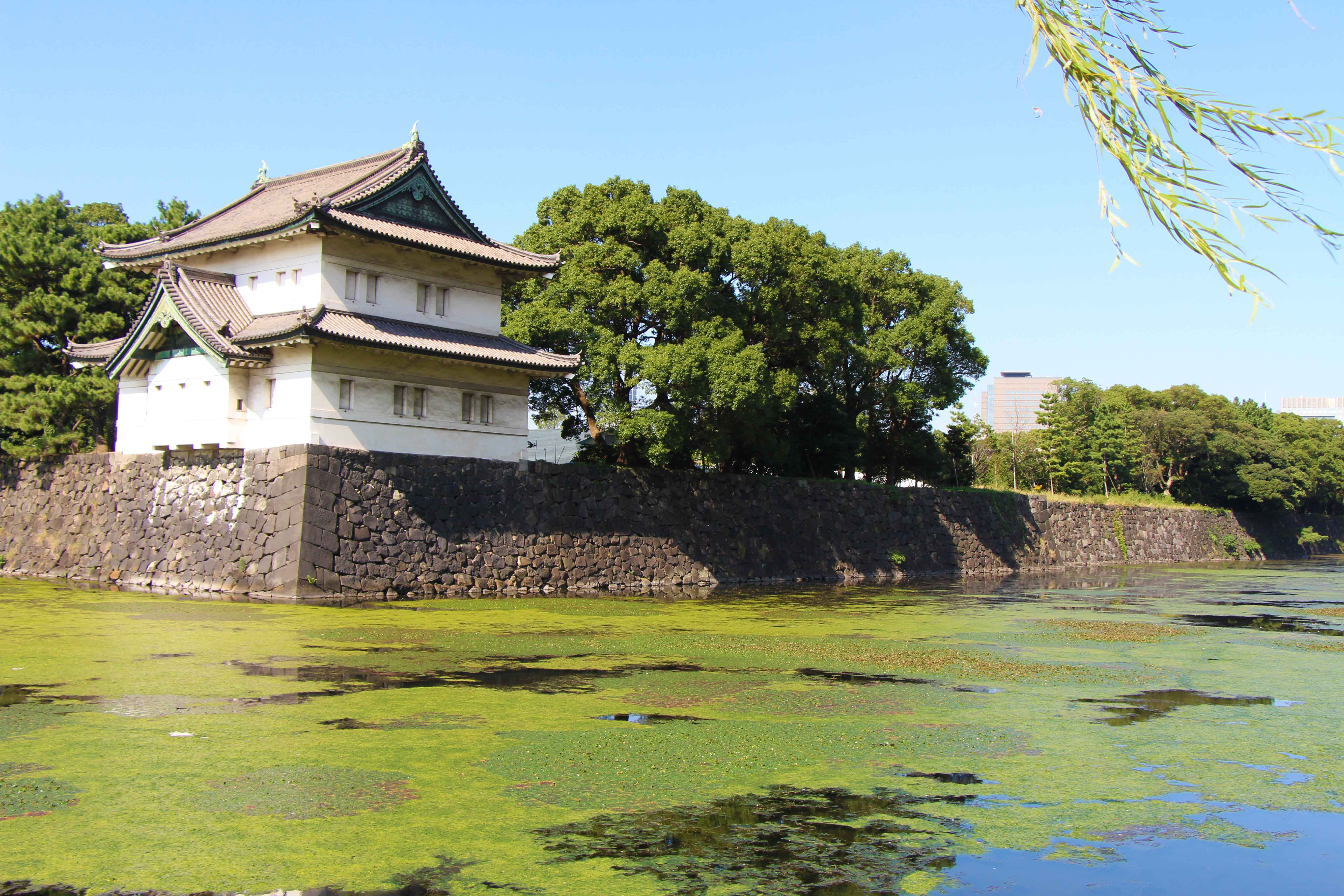 Baby-Can-Travel---Tokyo-Japan-With-Kids---Imperial-Palace-Tokyo-Japan