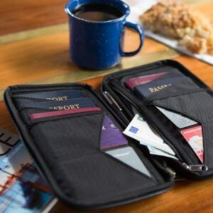 Baby Can Travel - Travel Gear for Dad - Family Passport Holder