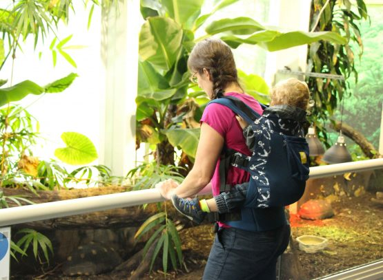 Essential travel gear for travel with toddler