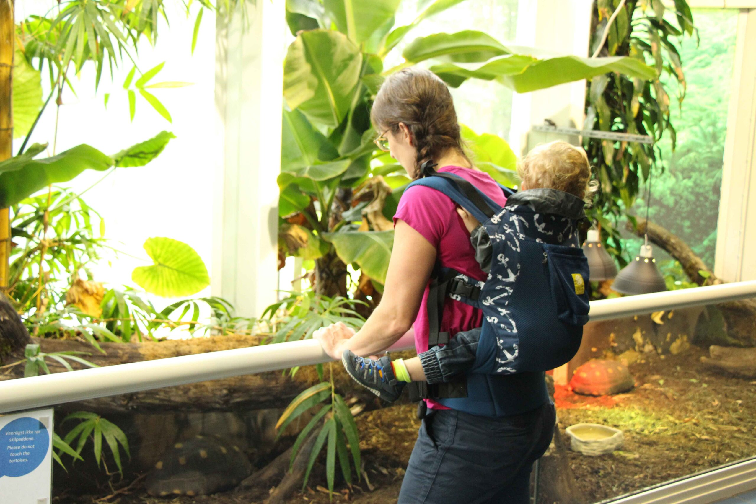 A mother carries her toddler in a LILLEbaby 3-in-1 CarryOn Toddler Carrier