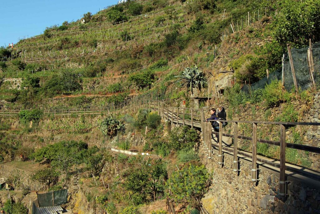 Hiking Cinque Terre with a toddler in a back[ack carrier near Manarola, Italy