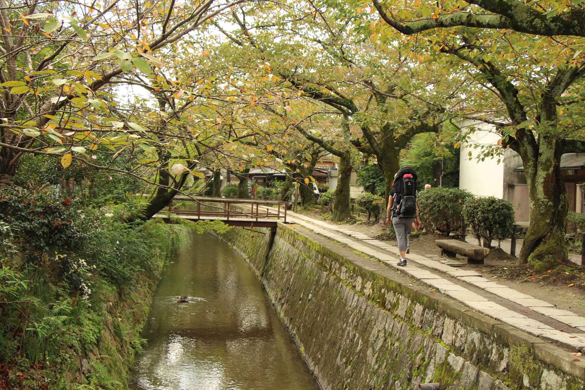 Philosopher's Path in Kyoto Japan with a Baby