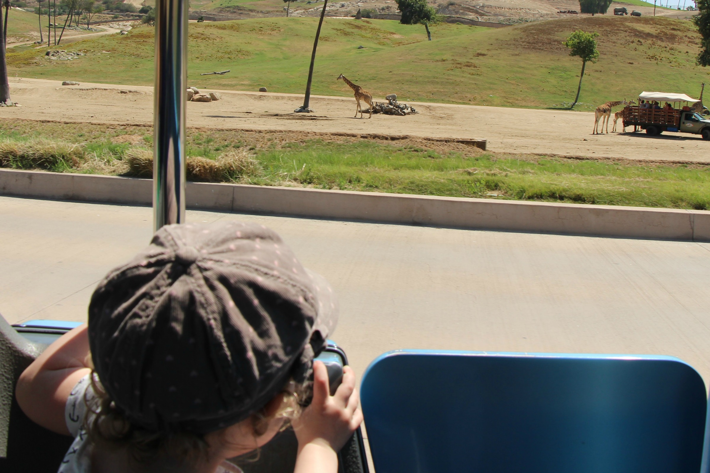 San Diego Safari park with a baby and toddler