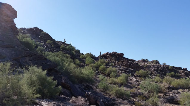 Hiking in Phoenix Arizona