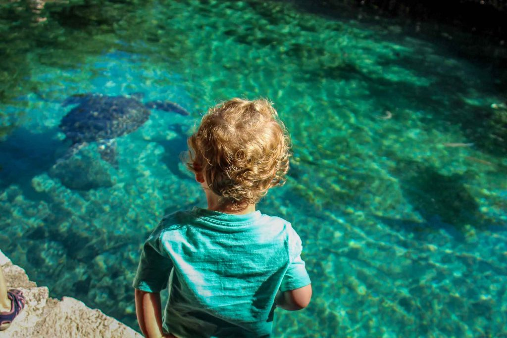 Xcaret Mexico with a baby or toddler