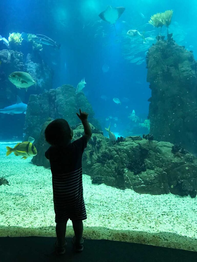 lisbon attractions for families