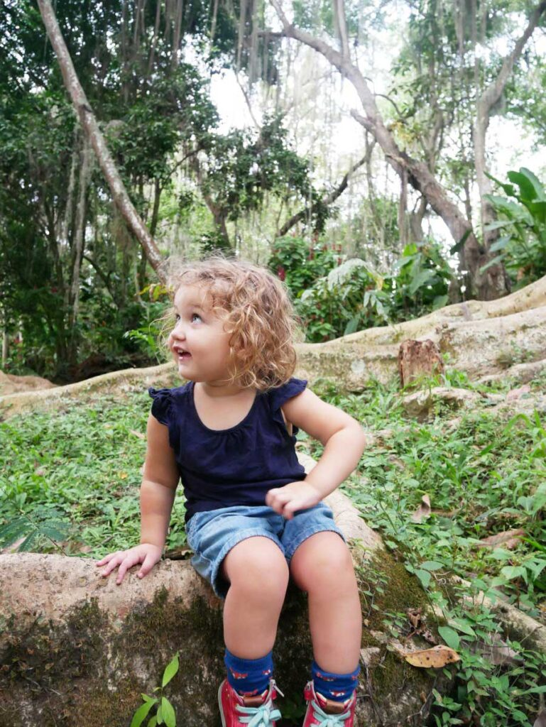 Parque el Gallineral with Toddler in Colombia