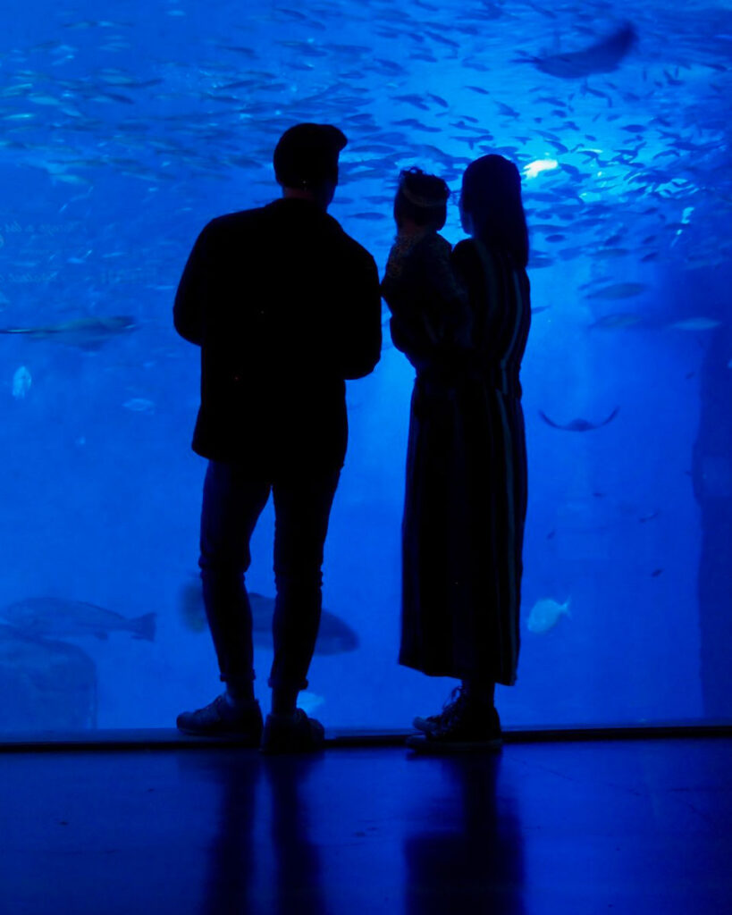 image of family standing in front of fish tank at aquarium in Seville Spain