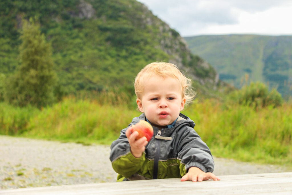 image of toddler on road trip stopped eating apple at a picnic table