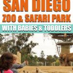 Tips for the San Diego Zoo & Safari Park