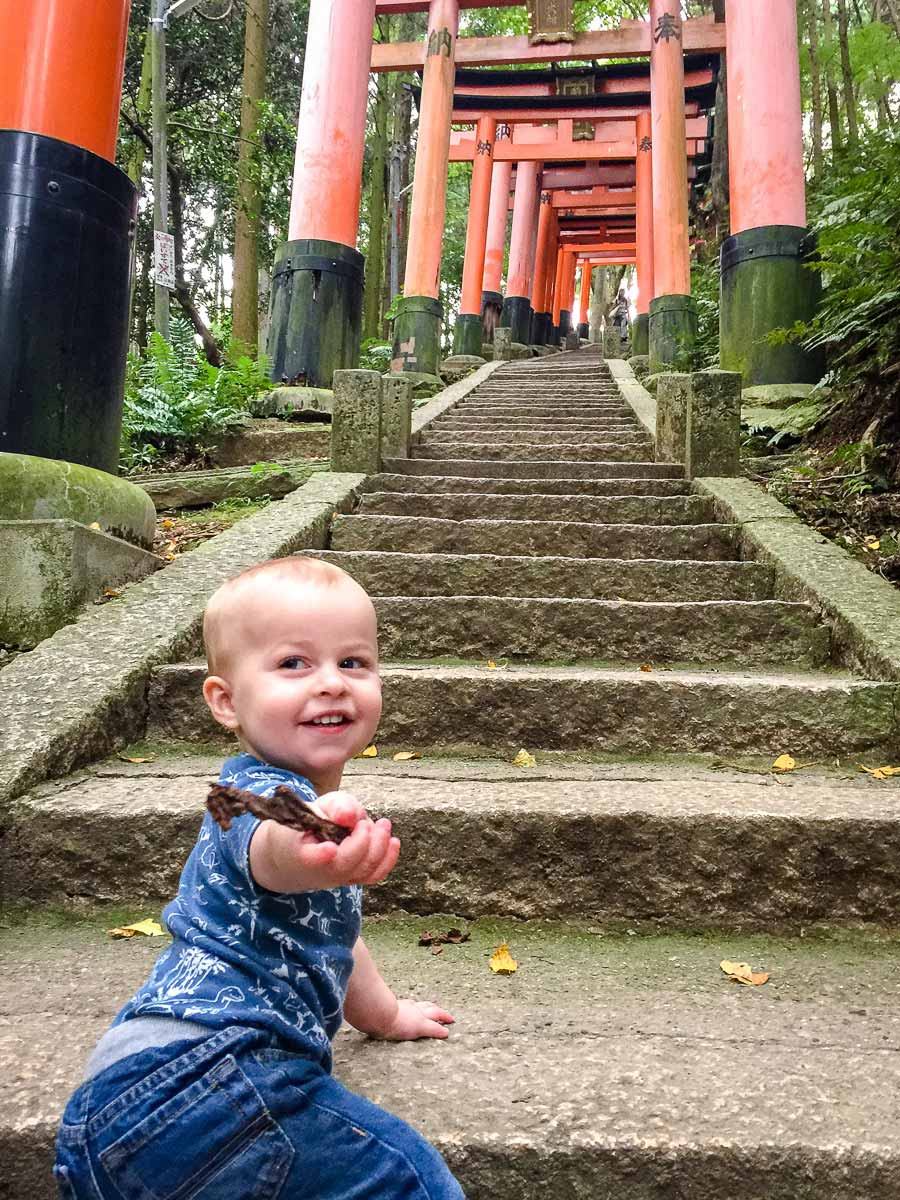 Fushimi Inari in Kyoto with a baby or toddler