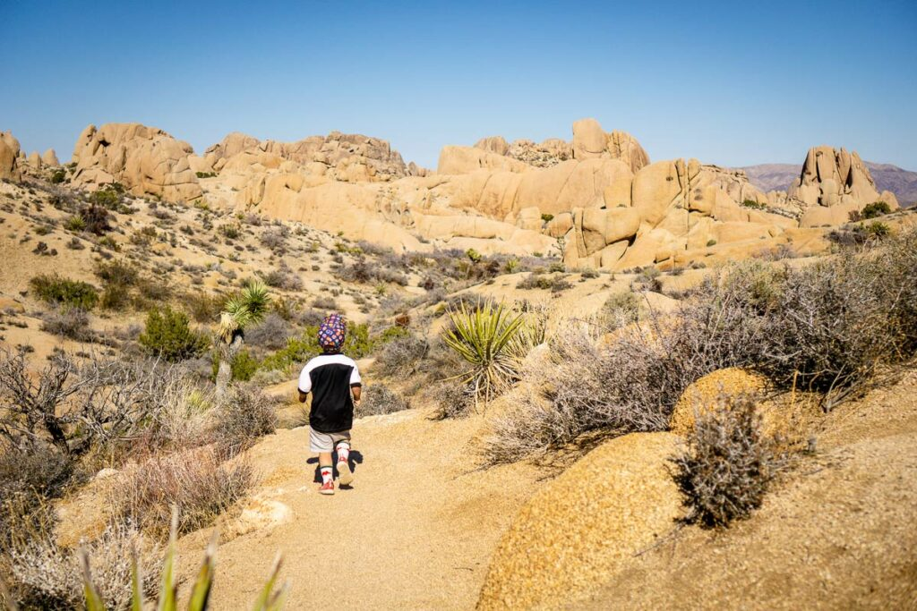 Skull Rock hike with a toddler in Joshua Tree NP