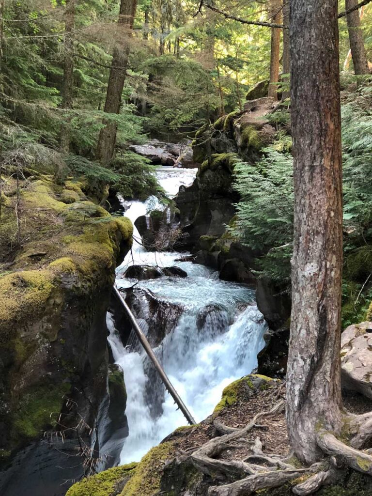 Trail of Cedars - waterfall hike