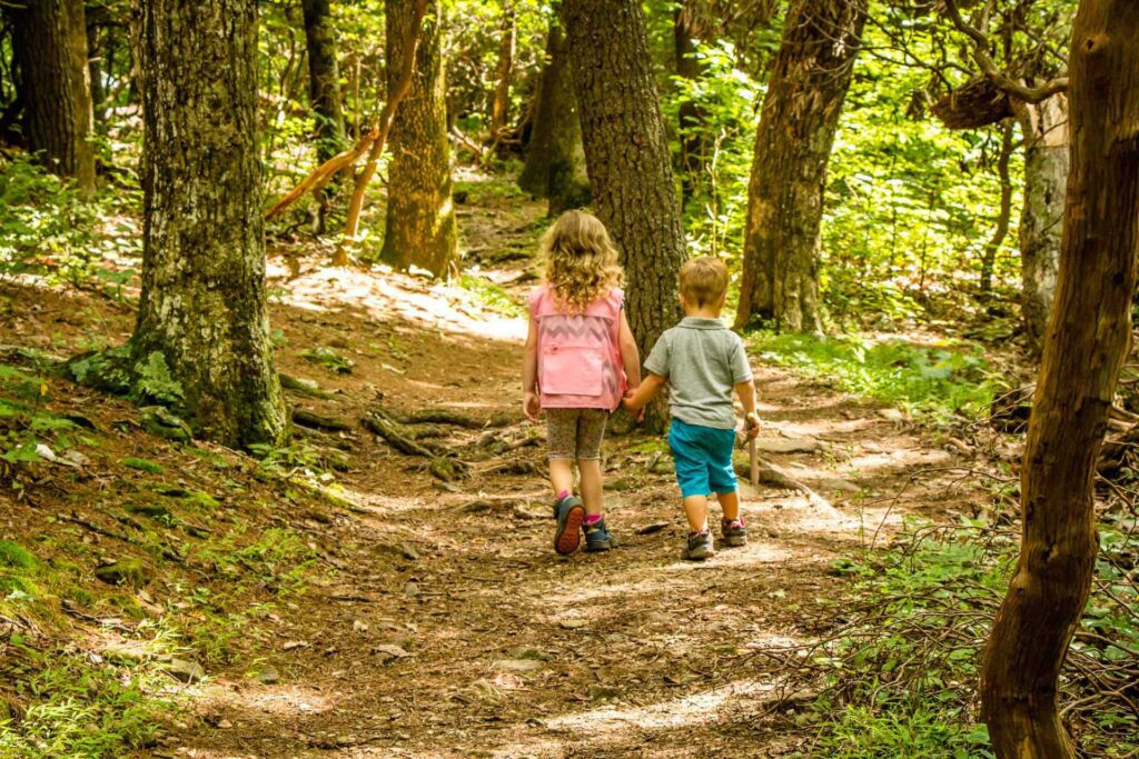 tips for hiking with a toddler