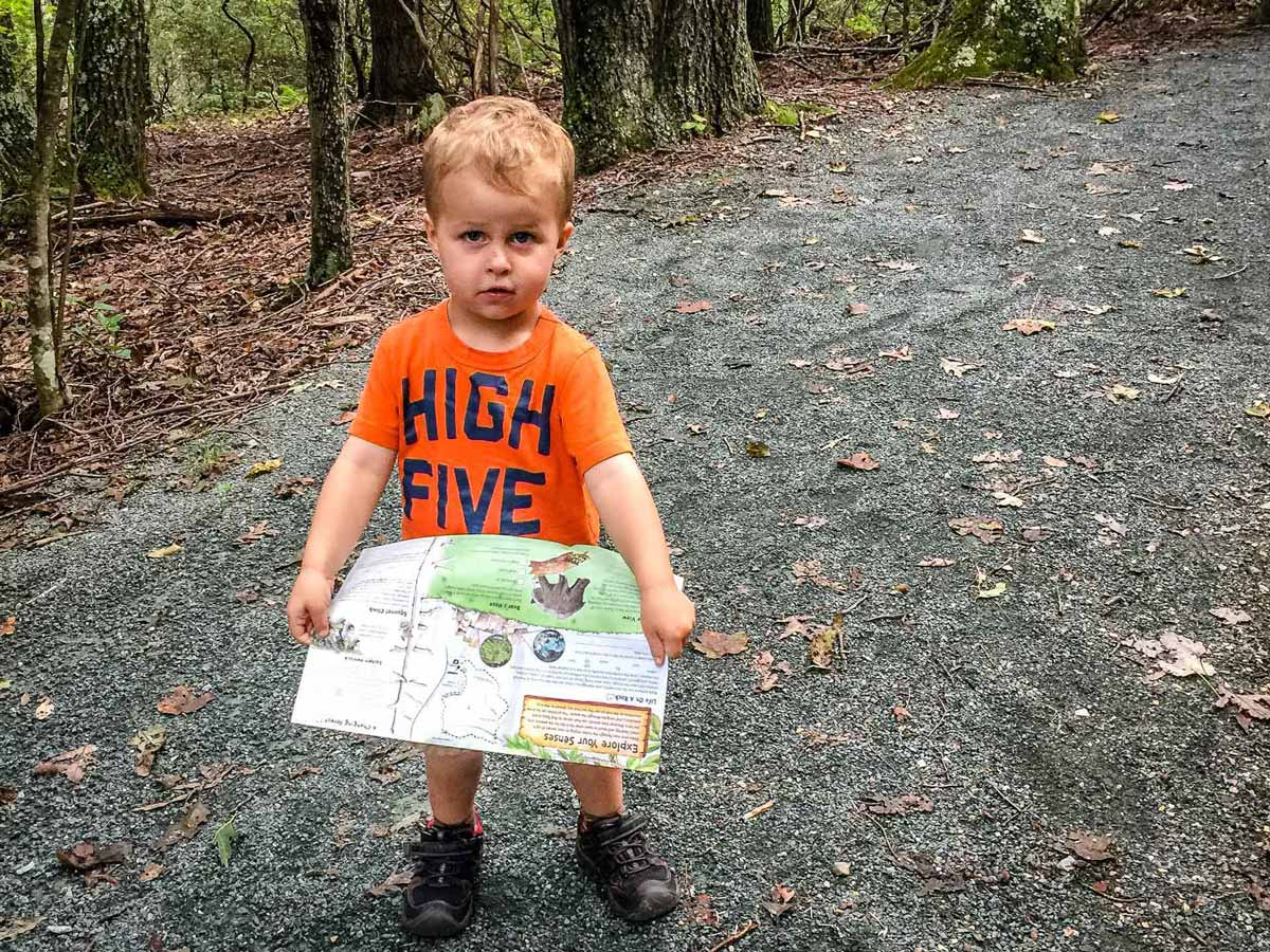 short hikes in shenandoah with toddlers