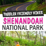 shenandoah park hikes with toddler