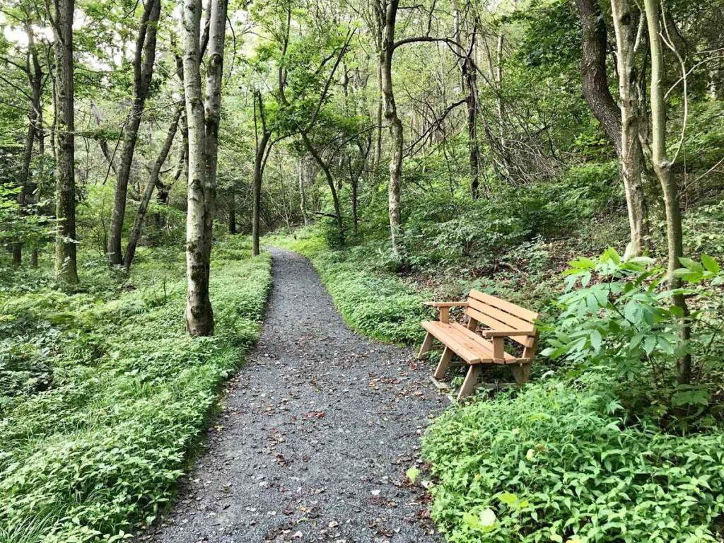 limberlost trail is a toddler friendly hike in Shenandoah NP