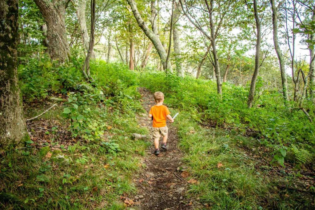 toddler friendly hikes in shenandoah