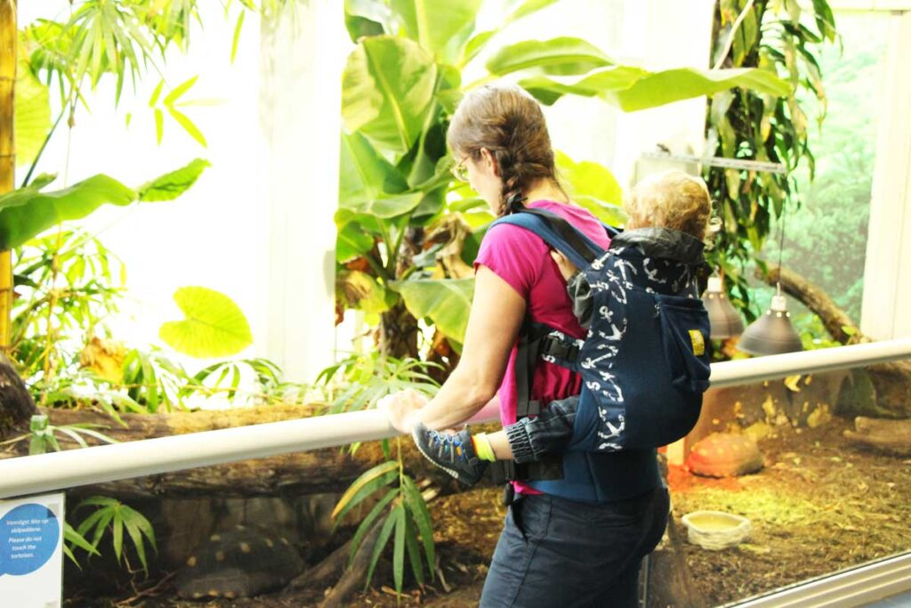 toddler carriers vs stroller for travel with a toddler
