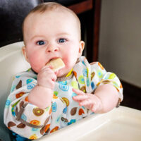Feeding Baby Solids on Holiday
