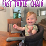 Inglesina Fast Table Chair - Portable Travel High Chair