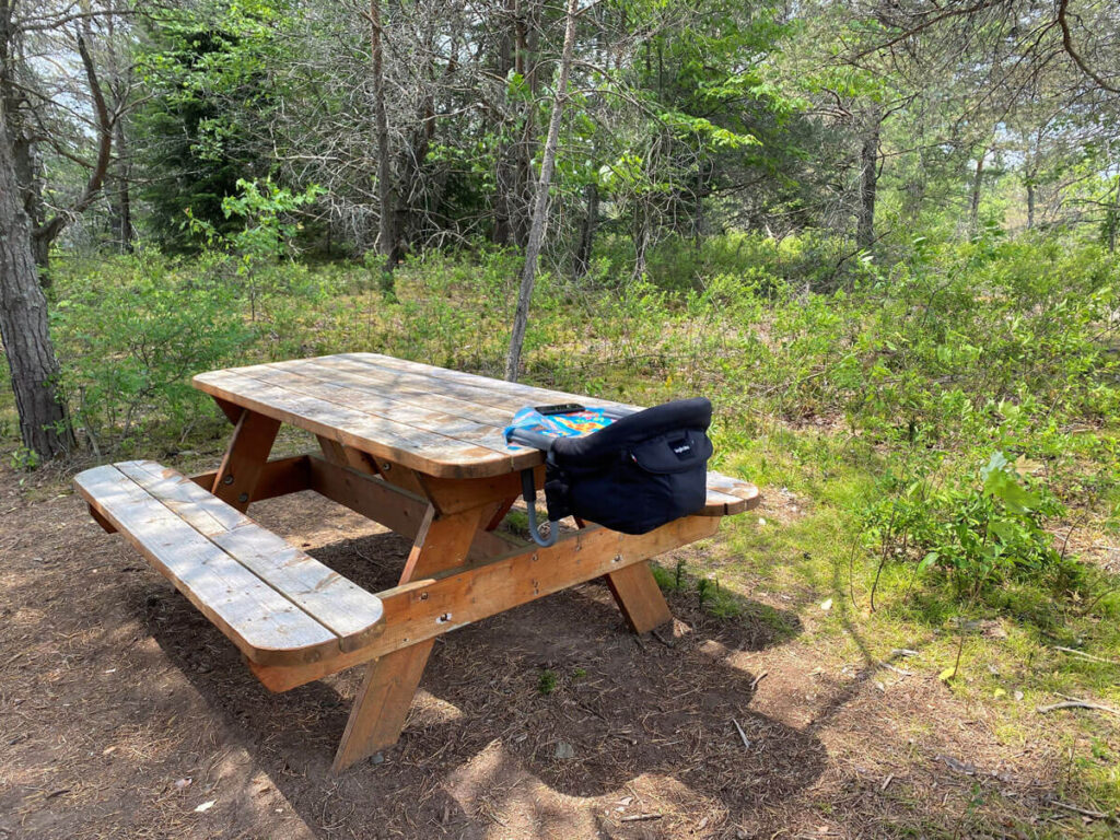 Using Inglesina high chair on picnic table - high chairs that attach to table