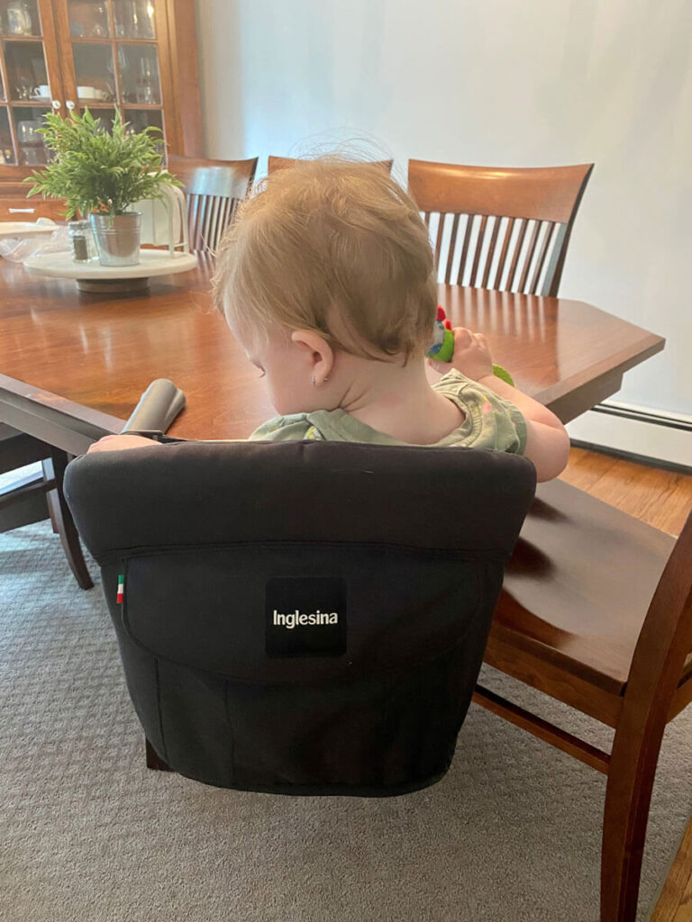 showing back of hook on table high chair - Inglesina Fast Table Chair